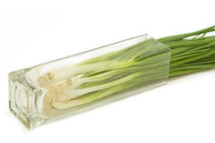 Green Onion ,fresh herbs and spices Stock Photo