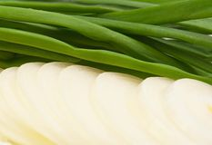 Green onion Stock Photo