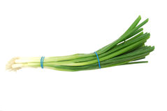 Green onion Royalty Free Stock Photo