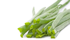 Green onion leafs Stock Image