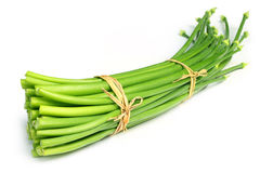 Green onion leaves Royalty Free Stock Photography