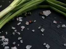 Green onion leaves Stock Images