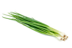 Green Onion Royalty Free Stock Photos