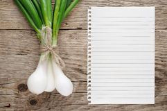 Green onion and paper for recipe Stock Image