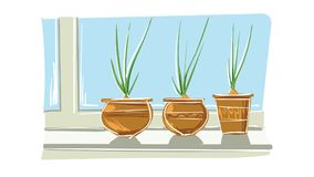 Green onion in pot Stock Photography