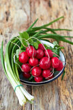 Green onion and radishes. Bunch of fresh green onion and radishes on old wooden table Royalty Free Stock Photo