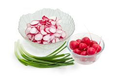 Green onion and red radish for the vegetable salad preparation Royalty Free Stock Photos