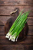 Green onion or scallion on wooden board, fresh spring chives Royalty Free Stock Photo