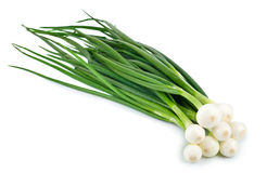 Green Onion on white background Royalty Free Stock Photography