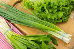 Green onion, wild leek, lettuce Royalty Free Stock Photography