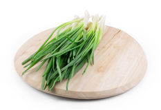 Green onion on a wooden board. Royalty Free Stock Photography
