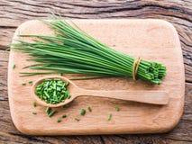 Green onion. royalty free stock photo