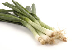Green Onions. Fresh green onions close-up and on a white background Royalty Free Stock Photos