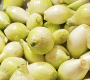 Green onions. Green onion pile close up Stock Photo
