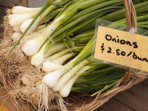 Green Onions At Market Stock Photography