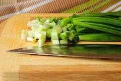 Green onions on the board Stock Image