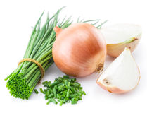 Green onions and bulb onion  on the white. Royalty Free Stock Photos