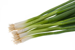 Green onions isolated on white Stock Images