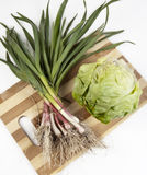 Green onions and lettuce. Fresh green onions and lettuce on wooden board on white background Royalty Free Stock Image