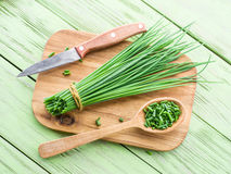 Green onions. Royalty Free Stock Photo