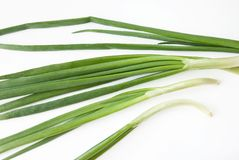 Green onions over white Stock Photo