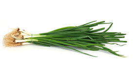 Green onions, photo Royalty Free Stock Photography