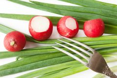 Green onions,  red radish over white. Background with fork Royalty Free Stock Images