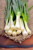 Green onions  on sacking Royalty Free Stock Photo