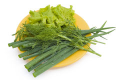Green onions, salad and fennel Royalty Free Stock Photography