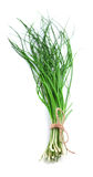 Green onions . Royalty Free Stock Photo
