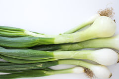 Green onions on white background Stock Photo