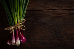 Green onions on wooden table. Bunch of green spring onions tied with a rope on rustic wooden table, left side Stock Photography