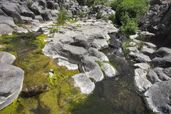 Green ooze. Canyon with cut basalt walls and a stream with green ooze stock photography
