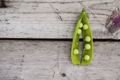 Green open pea on wooden table. Green open pea on wooden old planks table Stock Photo