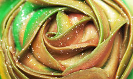 Green and orange creamy cupcake top close-up. Stock Images