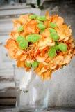 Green and orange Royalty Free Stock Photos