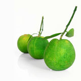 Green orange fruit in asia isolated on white Stock Image