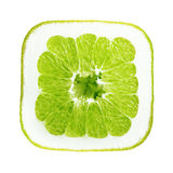 Green orange fruit isolated Stock Photo