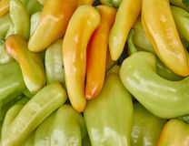 Green and orange horn peppers Royalty Free Stock Photo