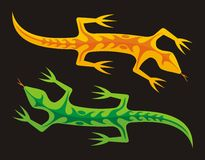 Green and orange lizards Royalty Free Stock Image