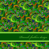 Green orange peacock feathers pattern background. Text place. Royalty Free Stock Photography