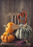 Green and orange pumpkins Royalty Free Stock Photography