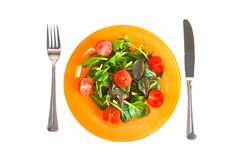 Green orange and red. Green salad with the knife and a fork Royalty Free Stock Photos