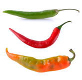 Green orange red hot chili pepper Royalty Free Stock Photos