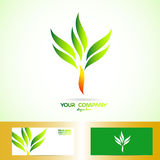 Green orange tree shape logo Royalty Free Stock Photos