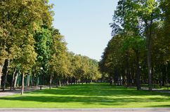 Green and orange trees in beautiful park. Floral and natural autumn landscap. E Stock Photo