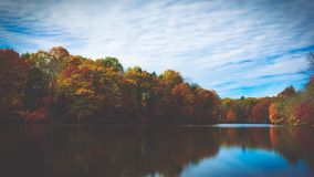 Green and Orange Trees on Lakeside during Daytime Stock Photo