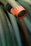 Green and orange, water garden hose Stock Photography