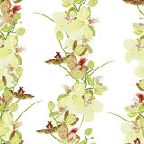 Green orchid seamless vector pattern Royalty Free Stock Photography