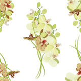 Green orchid seamless vector pattern Royalty Free Stock Photo
